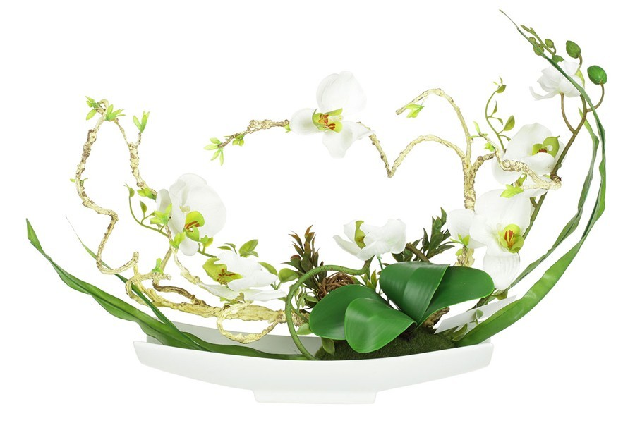 Dream garden декоративные цветы